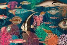 Vintage Underwater Pattern Background Illustration, Remixed From Public Domain Artworks