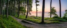 Jasmund National Park At Sunrise, Island Of Ruegen, Mecklenburg-Vorpommern, Germany