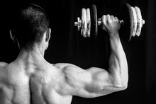 Arms Muscles, Weigh Lifting