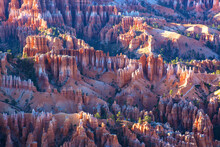 Panoramic Landscape, Bryce Canyon National Park At Sunset, US