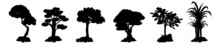 Detailed Tree Silhouettes. Winter Tree Silhouette Collection, Tree Silhouettes.