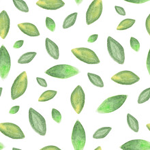 Seamless Pattern With Hand-drawn Watercolor Green Leaves On White. Abstract Background. Organic, Natural, Freshness Concept For Textile, Print, Etc.