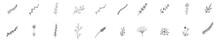 Tiny Plant Clip Art Elegant Hand Drawn Set - For Wedding Invitations, Posters, Blog Posts, Logos ,etc. Hand Drawn Plants, Floral Decoration Branch Leaf Plant Line Stroke Icon Pictogram Symbol Set