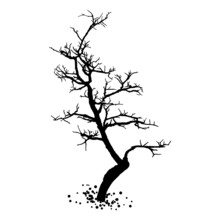 Naked Tree Silhouette. Hand Drawn Isolated Shape Of The Tree Stem Without Leaves Or Needles. Winter Season Tree Or Dead Old Plant. Dropped Sick Dry Foliage. Vector.