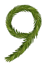 Number From A Young Spruce Twig Of A Tender Green Color 1,2,3, Without Background