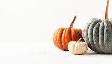 Orange Grey And White Pumpkins On The White Background. Halloween Background With Copy Space