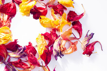 Composition With Dried Flowers With Place For Text. View From Above. Beautiful Floral Card
