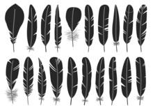Feather Of Bird Black Vector Set Illustration Of Icon.Feather Pattern Vector Set Of Icon.Set Illustration Pen Of Bird On White Background.