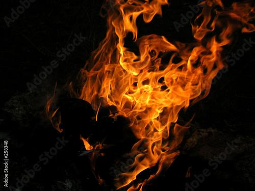 kind fire #258348