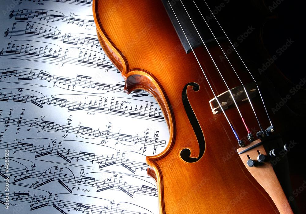 Leinwandbild Motiv - Denis Gvardiyan : violin