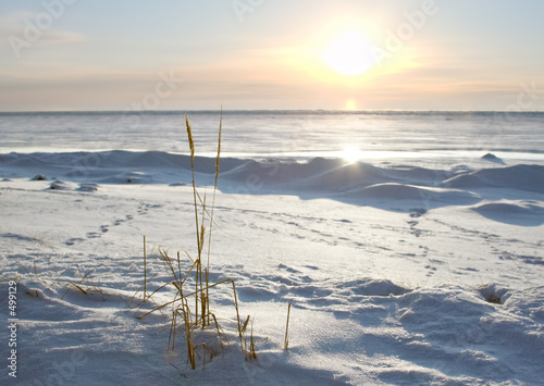 cold sunset #499129