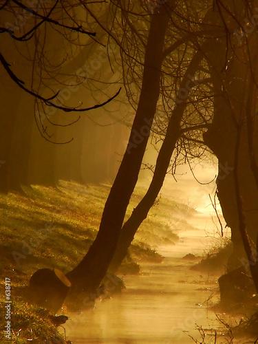 magic at golden creek #638717
