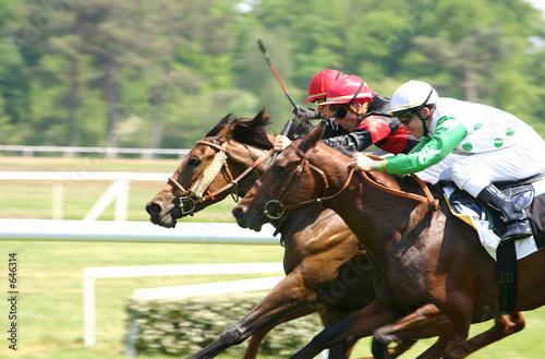 Photo chevaux de course