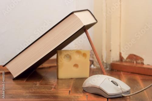 Photo mouse trap
