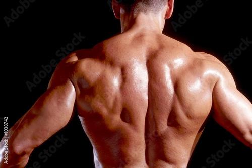 Fotografie, Obraz bodybuilders rücken