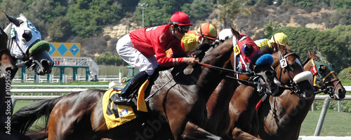 Photo race horses coming out of the gate