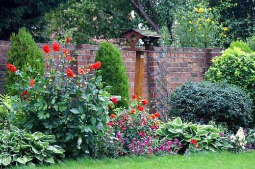country garden in bloom Fototapeta