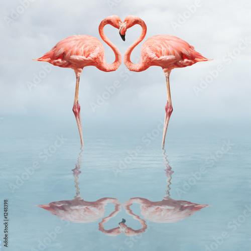Fototapeta Dwa różowe flamingi w romantycznej pozie do sypialni