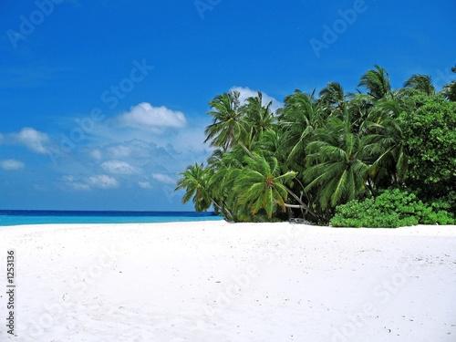 Fotografia fihalhohi beach