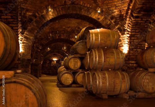 Canvas Print wine-cellar