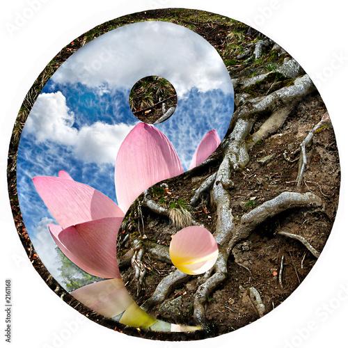 Canvas Print yin-yang 5