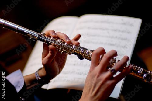 Canvastavla flute