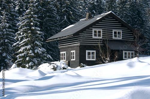 ski resort refuge #2618757