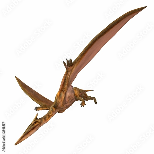 Fototapeta premium quetzalcoatlus