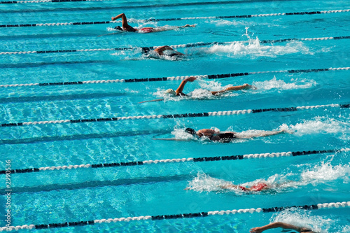 Canvas Print competitive swimming