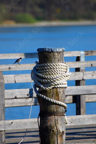 Fototapeta premium Post ze stromym molo
