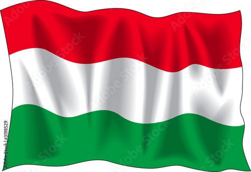 hungarian flag #3198529