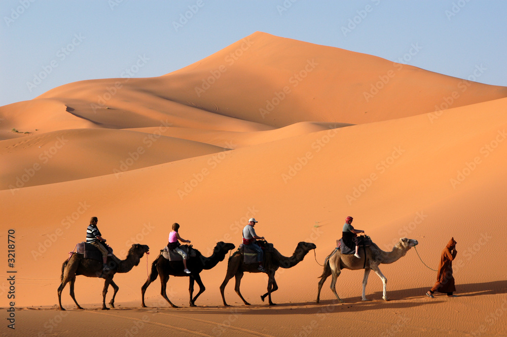 Leinwandbild Motiv - Vladimir Wrangel : camel caravan in the sahara desert