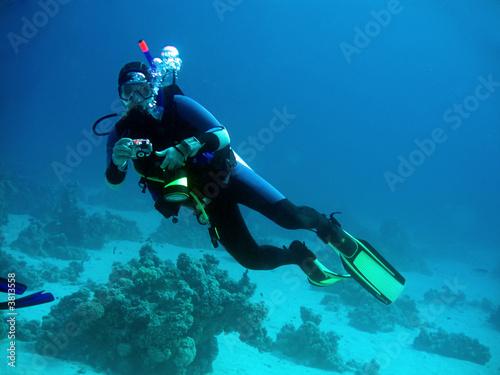 Photo Underwater photographer