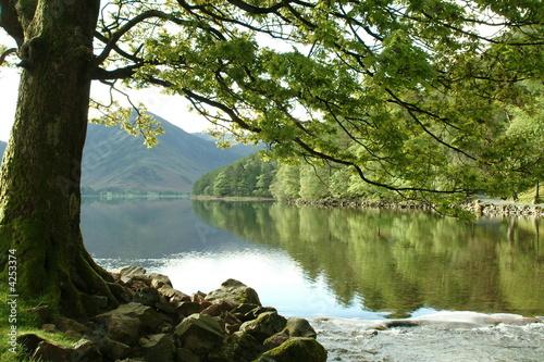 Fotografie, Obraz Lake District Shore