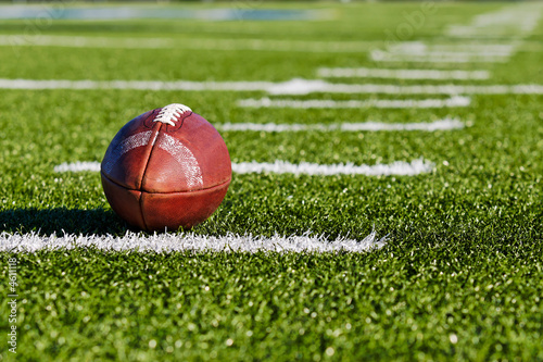 Canvas Print Football on Field