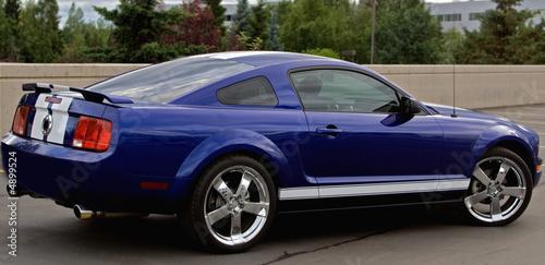 Fotografie, Obraz Mustang