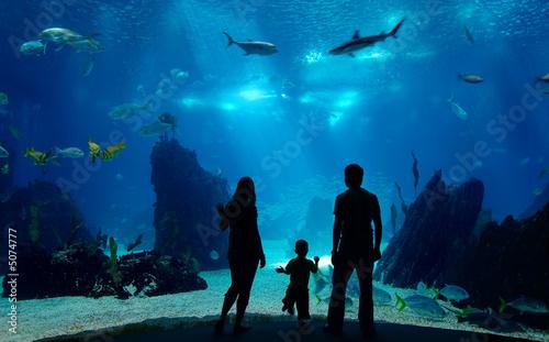 Underwater family Fototapeta