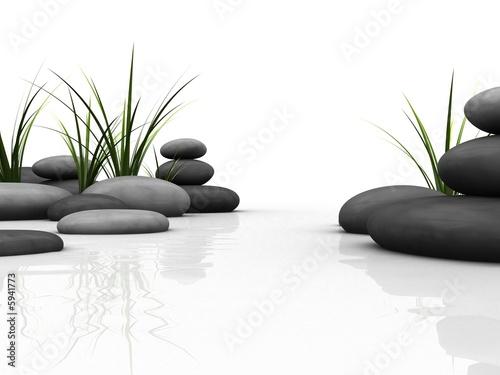 steine und gras #5941773