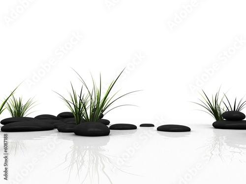 gras und steine #6087188