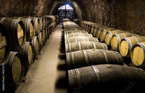 Fototapeta premium Beczki wina w piwnicy. Szeroki kąt widzenia.