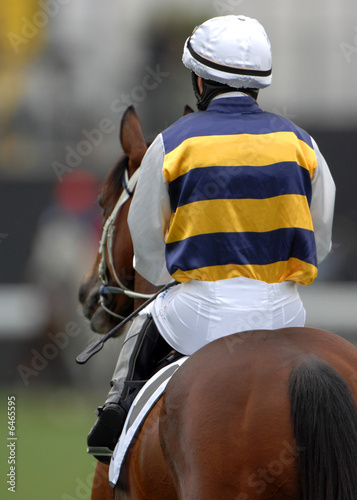 Photo A jockey heads out to the starting gates
