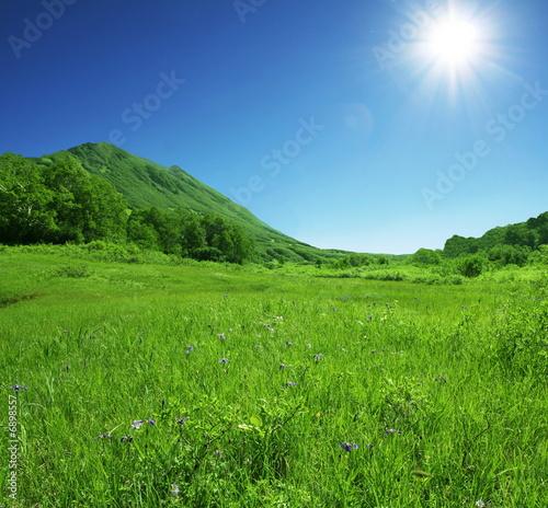 Green hills Fototapet