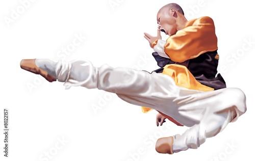 Kung Fu Fototapeta