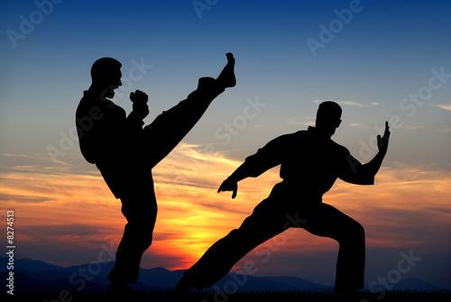 Canvas Print Martial art