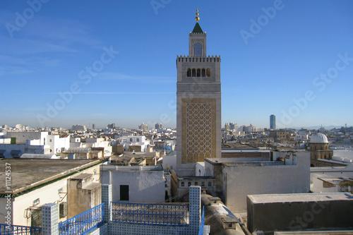 vue sur la medina de tunis
