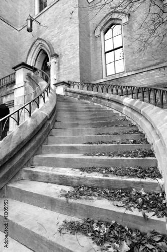 Fototapeta premium gotycka architektura