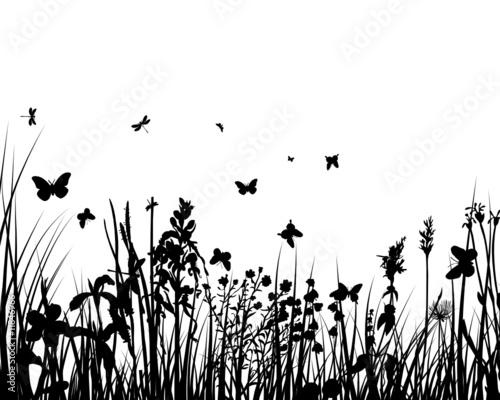 grass backgrounds #11846966