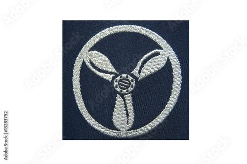 Obraz na plátně Royal Air Force rank