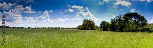 Fotografie, Obraz prairie camarguaise