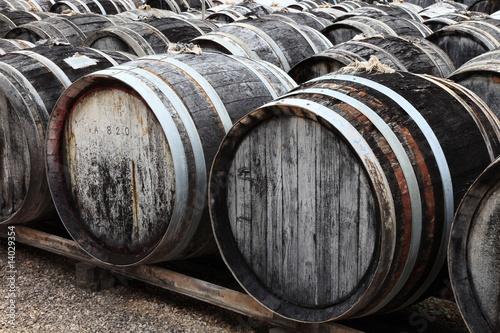Leinwand Poster Wermut 80 Jahre gelagert, Weinfässer, Languedoc Roussilion